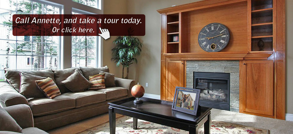 Tour available real estate in Monroe County, Michigan.
